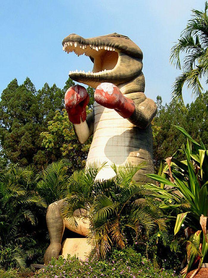World's Largest Boxing Crocodile at Humpty Doo